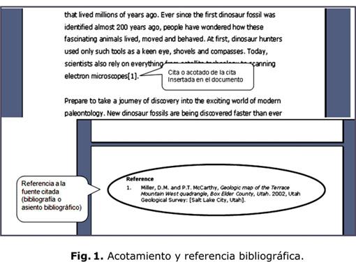 Le Resulta Difícil Hacer La Bibliografía Los Gestores De
