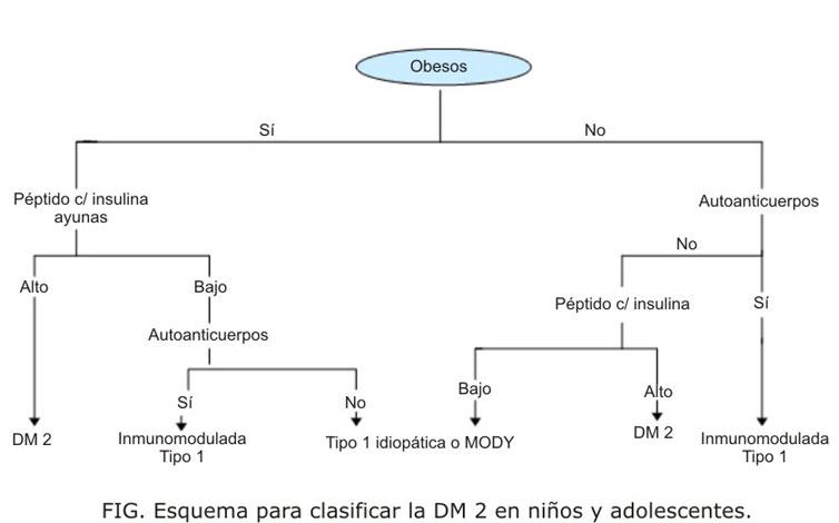 Diabetes tipo 2 en niños y adolescentes: aspectos clínico