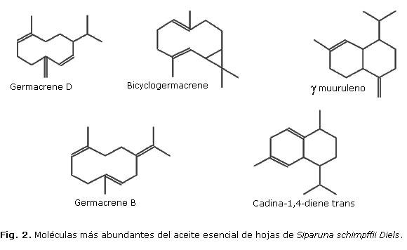 Composici n qu mica del aceite esencial de hojas de for Formula quimica del aceite de cocina